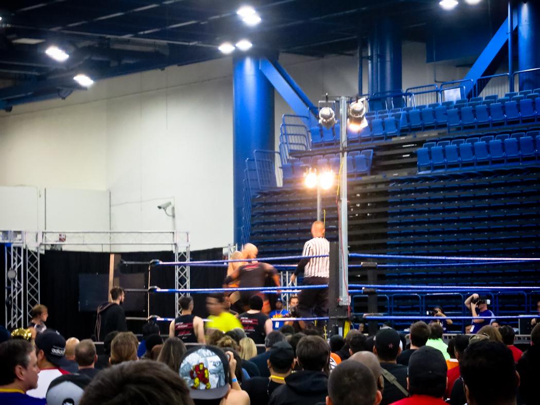 Live WWE Wrestling